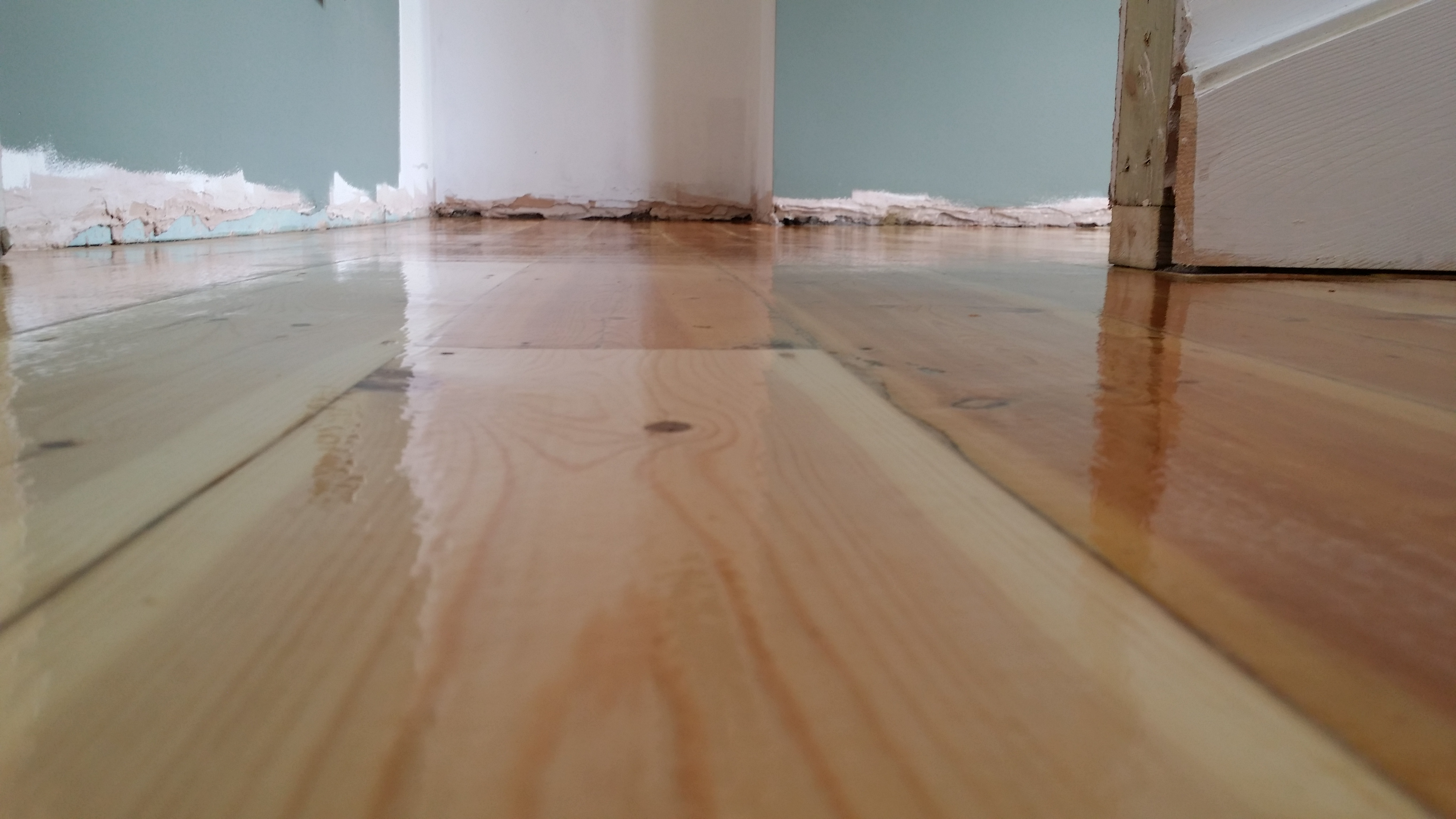 Floor Sanding And Refinishing In London Surrey And Sussex